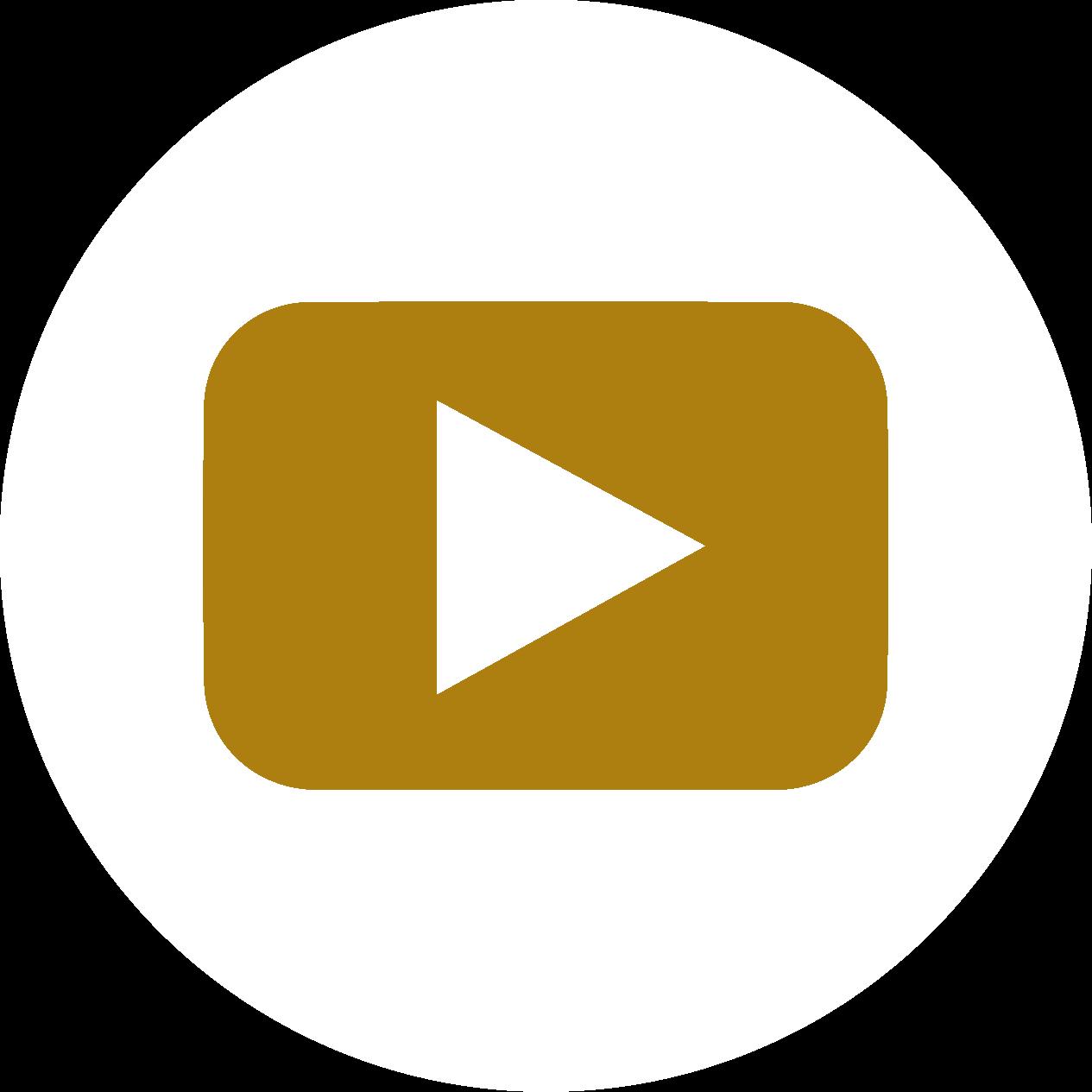 avital youtube